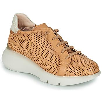 Cipők Női Rövid szárú edzőcipők Hispanitas TELMA Teve / Bézs