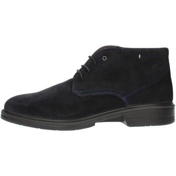 Cipők Férfi Oxford cipők Luisetti 30208SE Blue