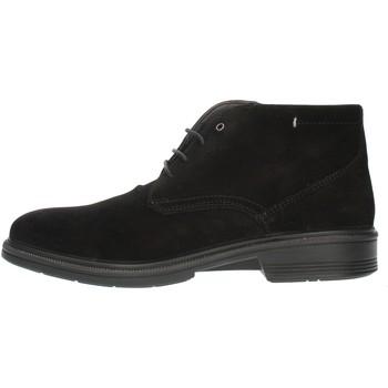 Cipők Férfi Oxford cipők Luisetti 30208SE Black