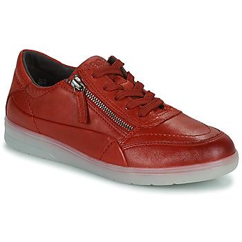 Cipők Női Rövid szárú edzőcipők Jana PHOEBIA Piros