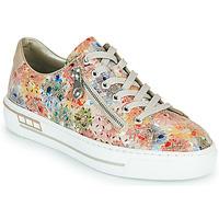 Cipők Női Rövid szárú edzőcipők Rieker FROLLI Sokszínű