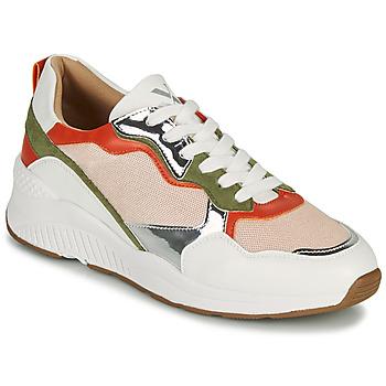Cipők Női Rövid szárú edzőcipők Vanessa Wu BK2242BA Sokszínű