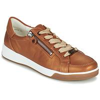 Cipők Női Rövid szárú edzőcipők Ara ROM-HIGHSOFT Barna