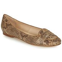 Cipők Női Balerina cipők  Betty London OVINOU Tópszínű