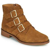 Cipők Női Csizmák Betty London LYS Konyak