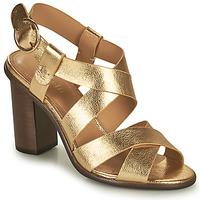 Cipők Női Szandálok / Saruk Minelli THIYA Arany
