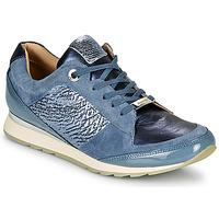 Cipők Női Rövid szárú edzőcipők JB Martin VILNES Farmer