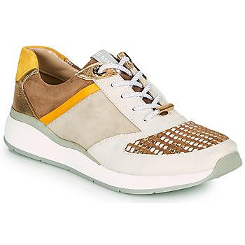 Cipők Női Rövid szárú edzőcipők JB Martin KALIO 20 Szahara