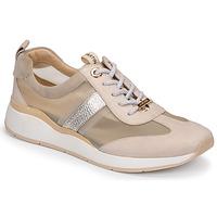 Cipők Női Rövid szárú edzőcipők JB Martin KAPY Kőpor