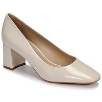 Cipők Női Félcipők JB Martin NORMAN Kőpor