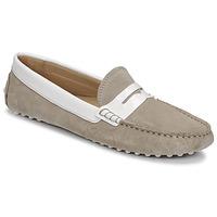 Cipők Női Mokkaszínek JB Martin TABATA E20 Vászon