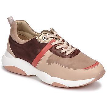 Cipők Női Rövid szárú edzőcipők JB Martin WILO Fard