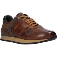 Cipők Férfi Rövid szárú edzőcipők Exton 591 Barna