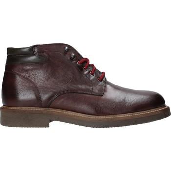 Cipők Férfi Csizmák Exton 852 Mások