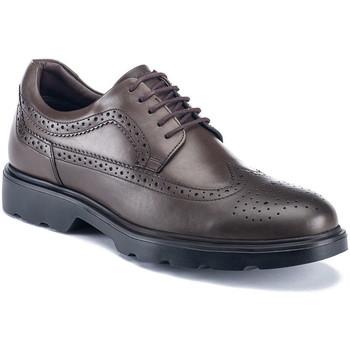 Cipők Férfi Oxford cipők Lumberjack SM67212 002 B01 Barna