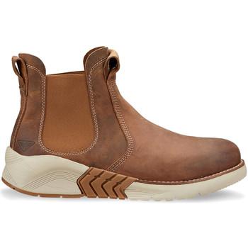 Cipők Férfi Csizmák Docksteps DSM105601 Barna