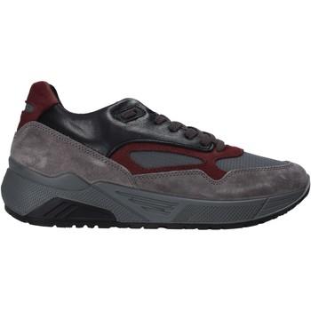 Cipők Férfi Rövid szárú edzőcipők IgI&CO 6142522 Szürke