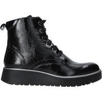 Cipők Női Csizmák IgI&CO 6151000 Fekete