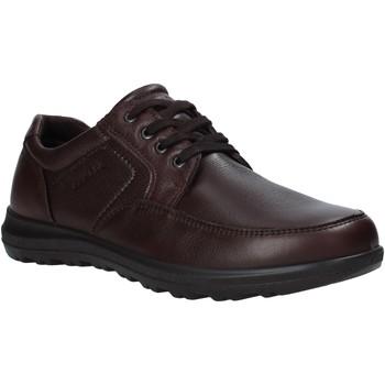 Cipők Férfi Oxford cipők Enval 6216222 Barna