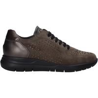 Cipők Női Rövid szárú edzőcipők Grunland SC5083 Barna