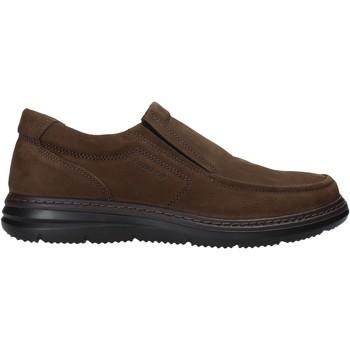 Cipők Férfi Belebújós cipők Enval 6209222 Barna