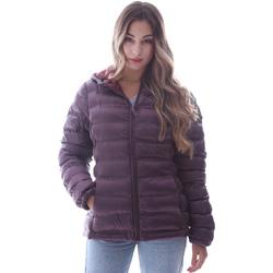 Ruhák Női Steppelt kabátok Invicta 4431716/D Ibolya