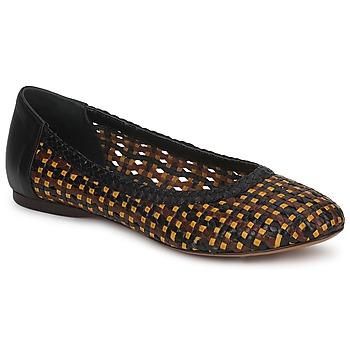 Cipők Női Balerina cipők / babák Stéphane Kelian WHITNEY Barna / Fekete