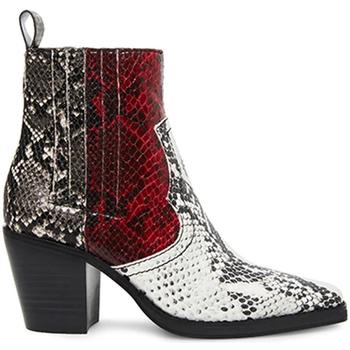 Cipők Női Csizmák Steve Madden SMSGENIVA-BRGGRY Fekete