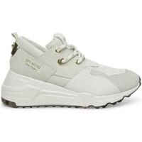Cipők Női Divat edzőcipők Steve Madden SMPCLIFF-WHTWHT Fehér