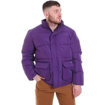 Ruhák Férfi Steppelt kabátok Dickies DK720342DEP1 Ibolya