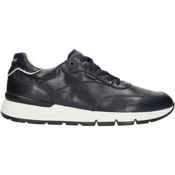Cipők Férfi Rövid szárú edzőcipők Nero Giardini E101992U Kék