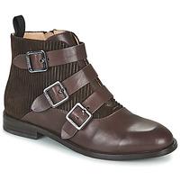 Cipők Női Csizmák JB Martin XALON Fakéreg