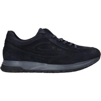 Cipők Férfi Rövid szárú edzőcipők Alberto Guardiani AGM004800 Kék