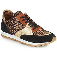 Cipők Női Rövid szárú edzőcipők JB Martin GLOIRE Fekete