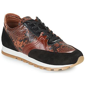 Cipők Női Rövid szárú edzőcipők JB Martin GLOIRE Barna