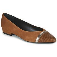 Cipők Női Balerina cipők  JB Martin TALENT Barna
