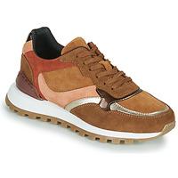 Cipők Női Rövid szárú edzőcipők JB Martin HUMBLE Barna