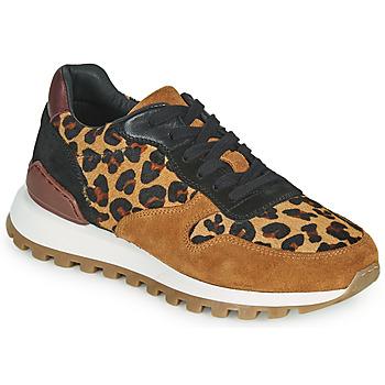 Cipők Női Rövid szárú edzőcipők JB Martin HABILLE Barna