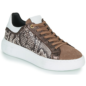 Cipők Női Rövid szárú edzőcipők JB Martin HIBISCUS Barna