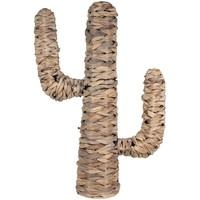 Otthon Műnövények Signes Grimalt Kaktusz Marrón