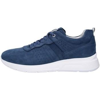 Cipők Férfi Oxford cipők NeroGiardini P900920U BLUE