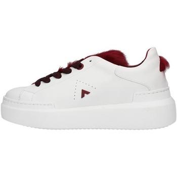 Cipők Női Rövid szárú edzőcipők Ed Parrish LALDMA11 WHITE