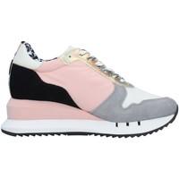 Cipők Női Rövid szárú edzőcipők Blauer S1CASEY01/NYS PINK
