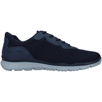 Cipők Férfi Rövid szárú edzőcipők Enval 7218211 BLUE