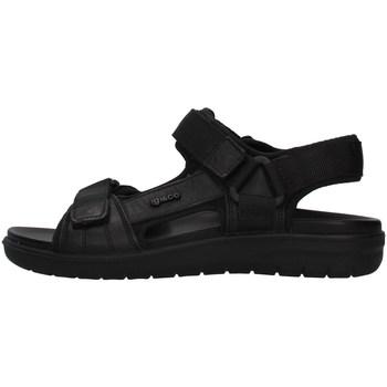Cipők Férfi Szandálok / Saruk IgI&CO 7131000 BLACK