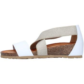 Cipők Női Szandálok / Saruk IgI&CO 7185055 WHITE