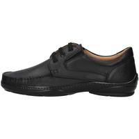 Cipők Férfi Oxford cipők Melluso U47038L BLACK