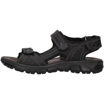 Cipők Férfi Sportszandálok IgI&CO 5147800 BLACK