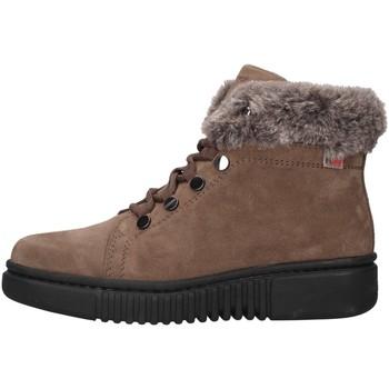 Cipők Női Csizmák Stonefly 212221 BEIGE