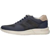Cipők Férfi Rövid szárú edzőcipők CallagHan 91314 Blue